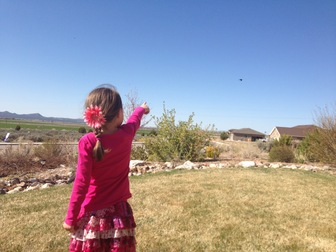 Girl pointing at bird in the sky