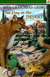 One Day in the Desert book cover